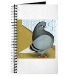 Barred Domestic Flight Journal
