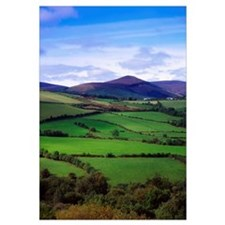 Fields From The Sugar Loaf Mountain, Co Wicklow, I