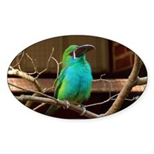 Perched Green Bird Decal