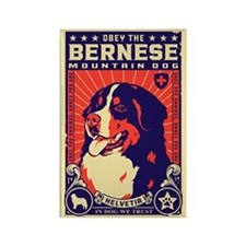 Obey the Bernese Mountain Dog! Magnet