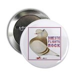 Domestic Flights Rock! Button
