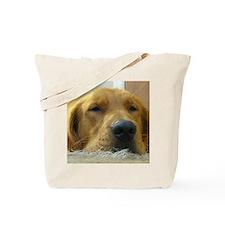 Did I eat the carpet? Tote Bag