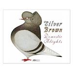 Brown Bar Cap Flight Small Poster