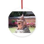 Ryukyu Shisa Ornament (Round)
