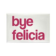 Bye Felicia Rectangle Magnet