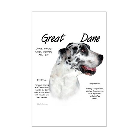 Harlequin Great Dane Mini Poster Print