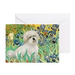 Irises / Coton Greeting Cards (Pk of 10)
