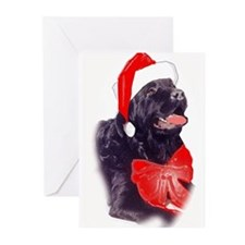 Santa Newf Greeting Cards