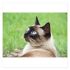 Siamese Cat Invitations