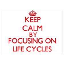 Keep Calm by focusing on Life Cycles Invitations