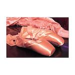 Ballet Pink Toe Shoes Photo Mini Poster Print