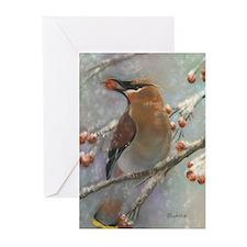 Unique Animals wildlife Greeting Cards (Pk of 20)