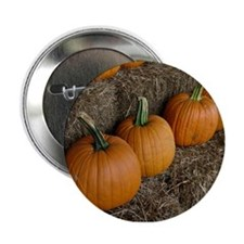 Fall Harvest Pumpkin Button