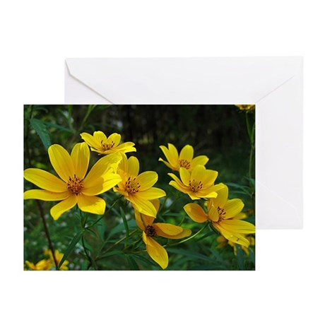Tickseed Sunflower Greeting Cards (6)