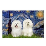 Starry Night / 2 Bolognese Postcards (Package of 8