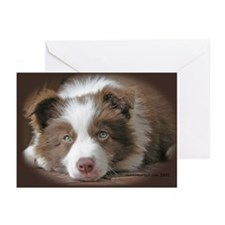 BORDER COLLIE RED PUPPY Greeting Cards (Pack of 6)