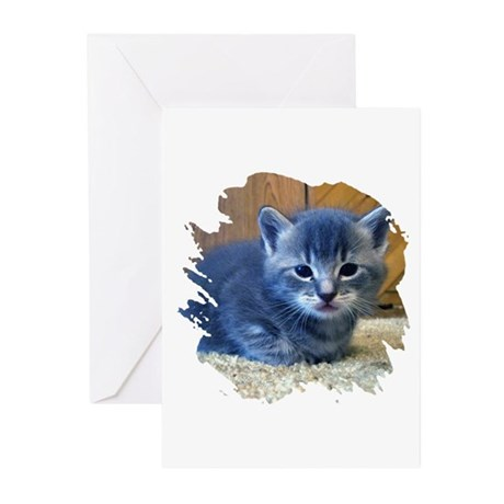 Grey Kitten Greeting Cards (Pk of 10)