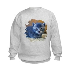 Grey Kitten Kids Sweatshirt