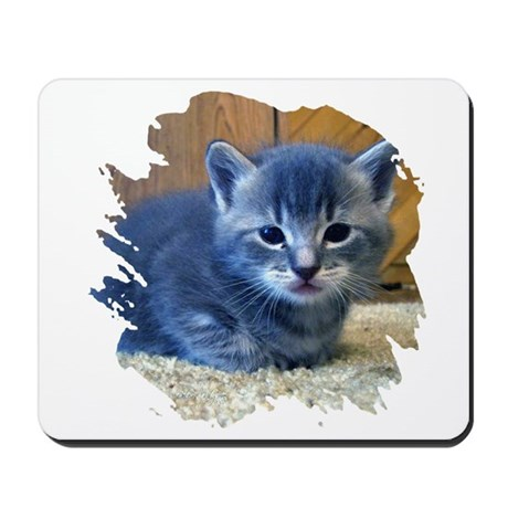 Grey Kitten Mousepad