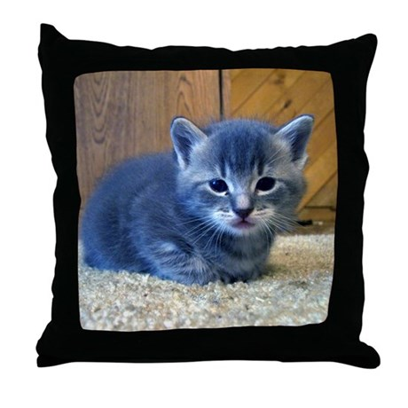 Grey Kitten Throw Pillow