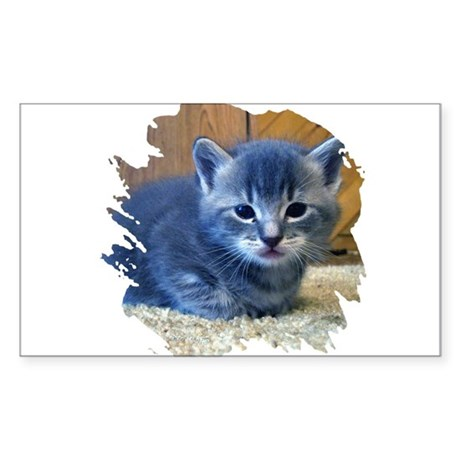 Grey Kitten Rectangle Sticker