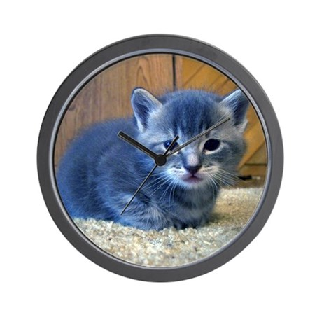 Grey Kitten Wall Clock