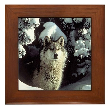 Winter Wolf Framed Tile