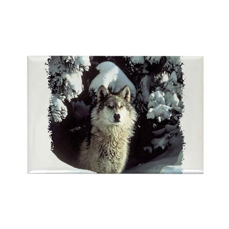 Winter Wolf Rectangle Magnet