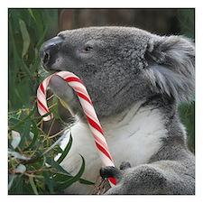 Christmas Koala Candy Cane Invitations