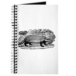 Drawing of a Badger Journal