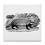 Drawing of a Badger Tile Coaster