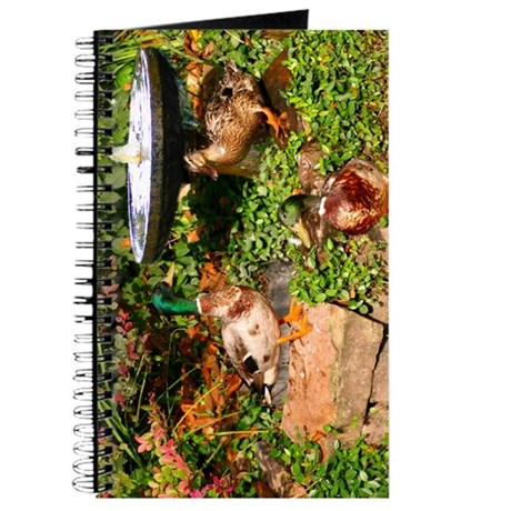 Wild Mallard Ducks Journal