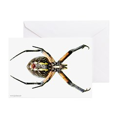 Spider Greeting Cards (6)