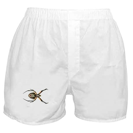 Spider Boxer Shorts
