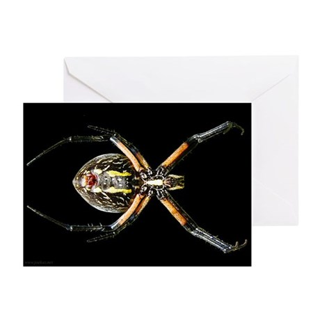 Spider - black - Greeting Cards (6)