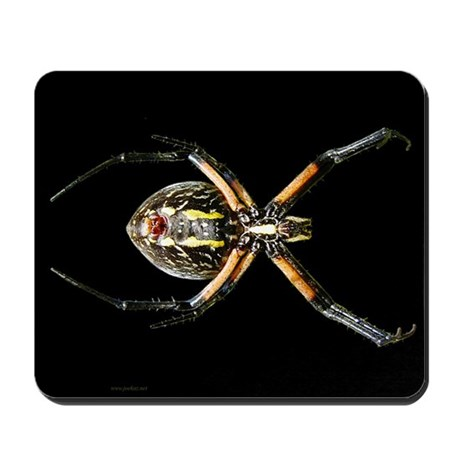 Spider - black - Mousepad