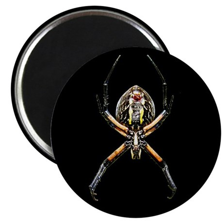 Spider - black - Magnet