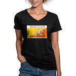Bhutan.jpg Women's V-Neck Dark T-Shirt