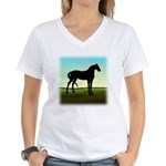 Grassy Field Horse Women's V-Neck T-Shirt