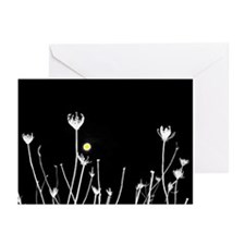 Funny Black queen Greeting Cards (Pk of 10)