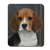 Picture Perfect Beagle Mousepad
