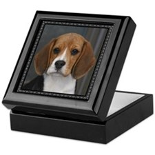 Picture Perfect Beagle Keepsake Box
