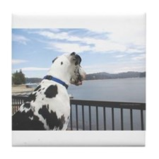 Lake Arrowhead Harlequin Great Dane Tile Coaster