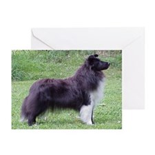Greeting Cards (Pk of 10) - Bi-Black Sheltie
