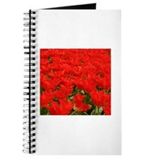 Bright red tulips Journal