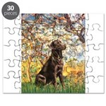 Spring - Chocolate Lab 11.png Puzzle