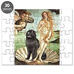 VENUS-Newfie-Blk2.png Puzzle