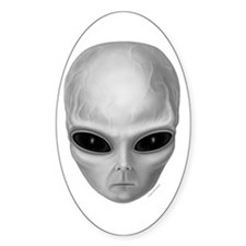 Alien Stare Oval Decal