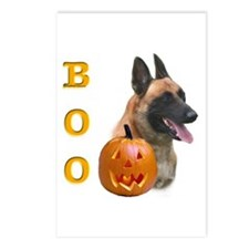 Malinois Boo Postcards (Package of 8)