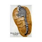 Ring-Tailed Lemur Rectangle Magnet